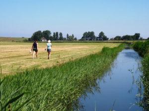 Wandeltocht Mooi Wieringen met Sport Nu Westerland