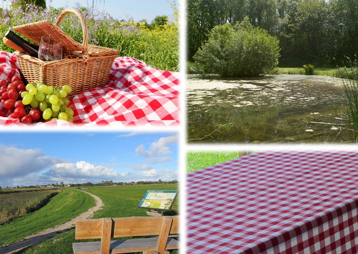 Wieringer-Picknick-tocht