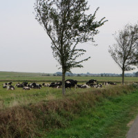 Wandelen op Wieringen