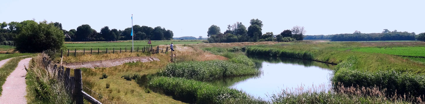Wieringen Hoelmerdijk